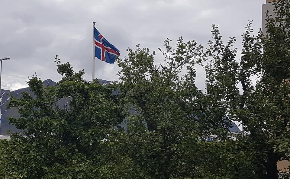 Gleðilega þjóðhátíð kæru vinir !